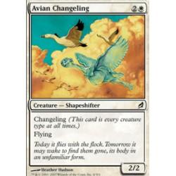 Avian Changeling