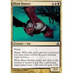 Blind Hunter