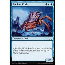 Ancient Crab