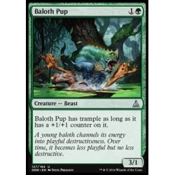 Baloth Pup
